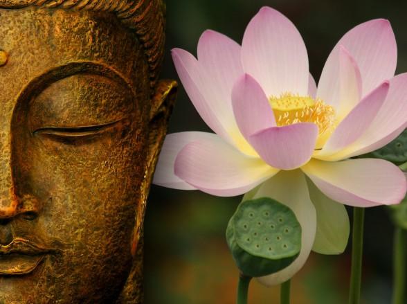 Healing-Journey